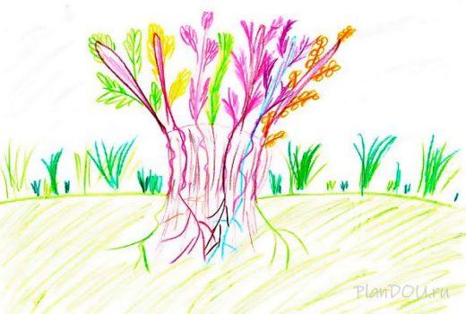 Тематическая неделя «Царство деревьев»