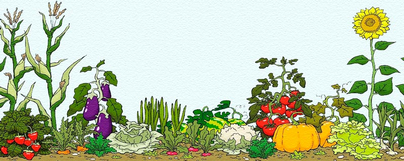 Дидактический материал по теме «Овощи»