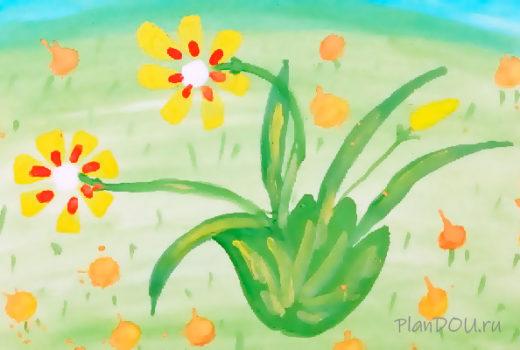 Тематическая неделя «Удивительный мир растений»